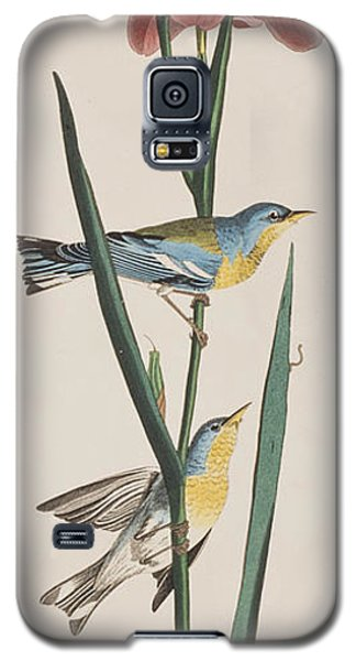 Blue Yellow-backed Warbler Galaxy S5 Case by John James Audubon