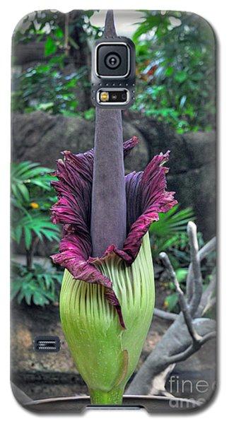 Corpse Flower Galaxy S5 Case by Savannah Gibbs