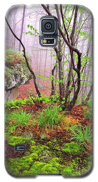 Foggy Spring Morning Galaxy S5 Case