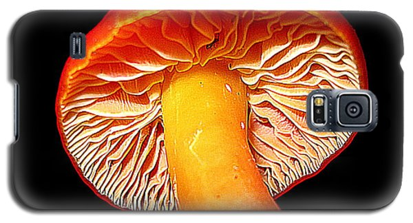 Galaxy S5 Case featuring the photograph  In Mushroom by John King
