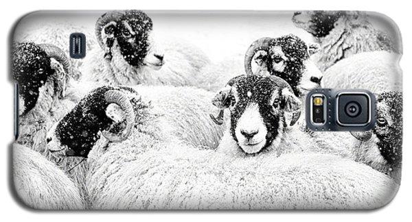 In Winters Grip Galaxy S5 Case by Janet Burdon