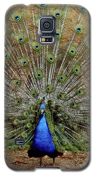 Galaxy S5 Case featuring the photograph  Iridescent Blue-green Plumage by LeeAnn McLaneGoetz McLaneGoetzStudioLLCcom