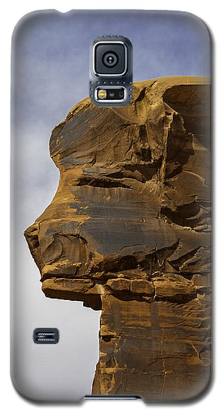 Pharaoh Galaxy S5 Case by Elizabeth Eldridge