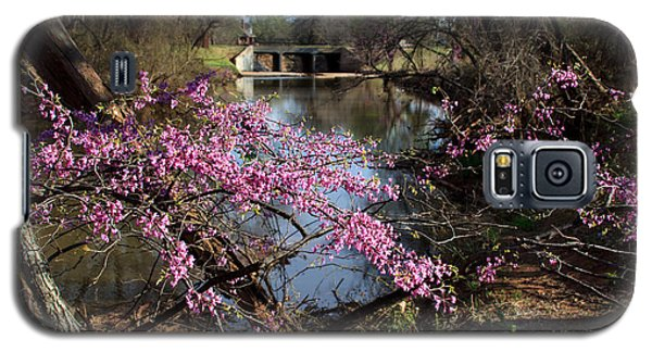 Redbuds And A Distant Bridge Galaxy S5 Case