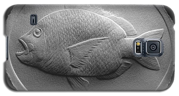 Relief Saltwater Fish Drawing Galaxy S5 Case