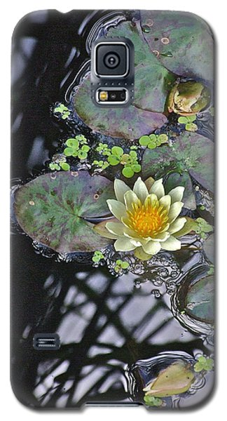 September White Water Lily Galaxy S5 Case