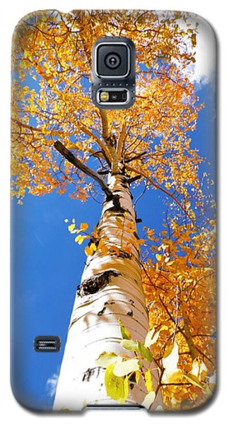 Galaxy S5 Case featuring the photograph  The Aspen Crown Dixie National Forest Utah by Deborah Moen