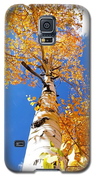 The Aspen Crown Dixie National Forest Utah Galaxy S5 Case