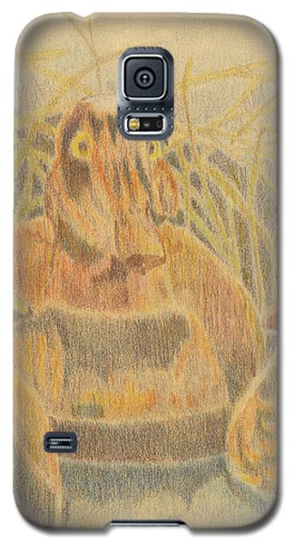 Wooden Duck Decoys Galaxy S5 Case