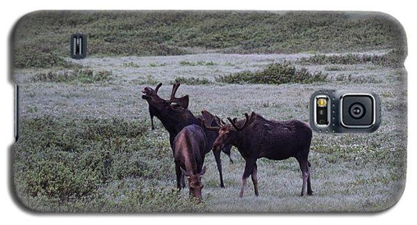 Moose Cameron Pass Co Galaxy S5 Case