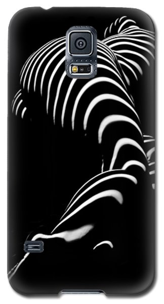 0774-ar Zebra Striped Figure Of A Large Woman Fine Art Photograph By Chris Maher Galaxy S5 Case