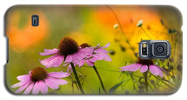 Coneflower Symphony Galaxy S5 Case