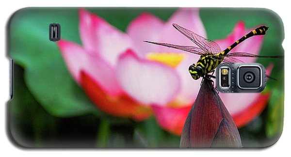 A Dragonfly On Lotus Flower Galaxy S5 Case