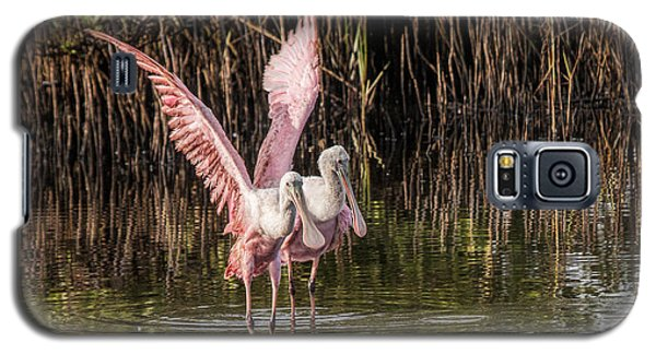 A Pair Of Spoonbills Galaxy S5 Case