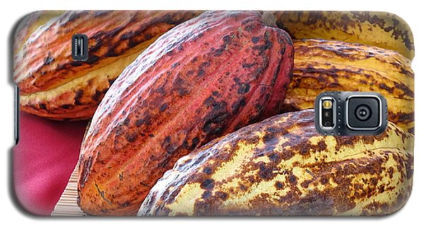 A Pile Of Cacao Pods Galaxy S5 Case