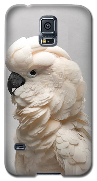 A Salmon-crested Cockatoo Galaxy S5 Case