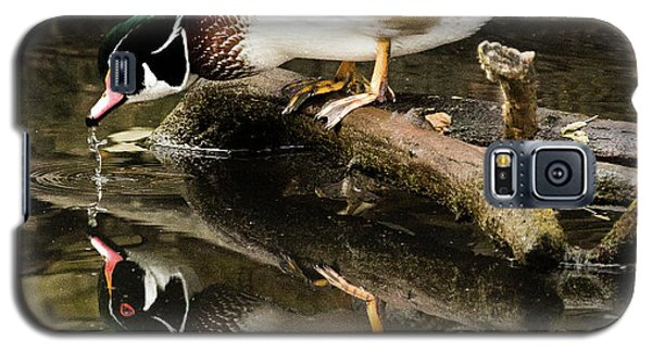 A Sip For You And Me Wildlife Art By Kaylyn Franks Galaxy S5 Case