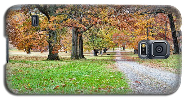 A Walk In The Park Galaxy S5 Case by Robert Culver