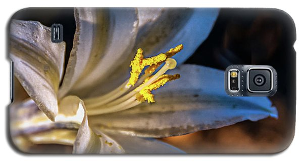 Galaxy S5 Case featuring the photograph Ajo Lily by Robert Bales
