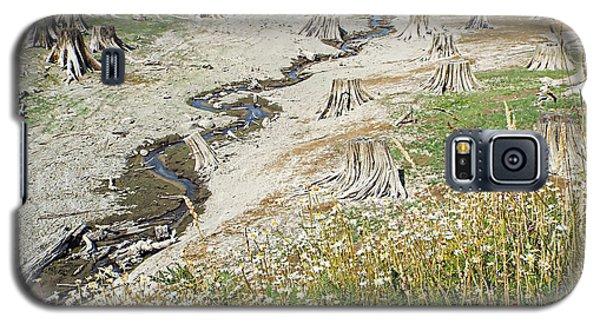 Galaxy S5 Case featuring the photograph Alder Lake Stumps by Joseph Hendrix