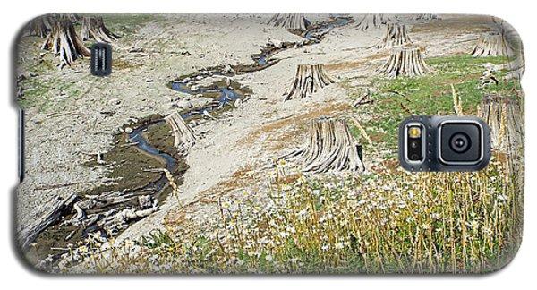 Alder Lake Stumps Galaxy S5 Case by Joseph Hendrix