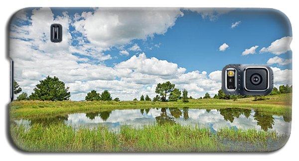Alfa Fia Tank Galaxy S5 Case