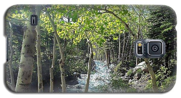 Along Alberta Falls Trail Rocky Mountain National Park Galaxy S5 Case
