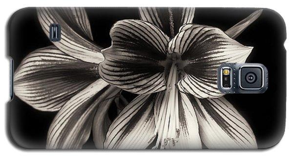 Amaryllis 'papilio Improved' Galaxy S5 Case