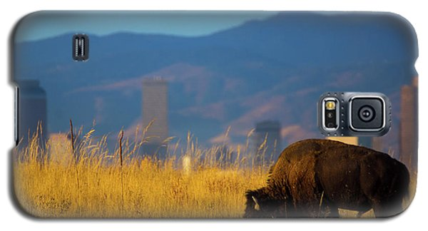 American Bison And Denver Skyline Galaxy S5 Case