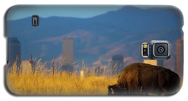 American Bison And Denver Skyline Galaxy S5 Case