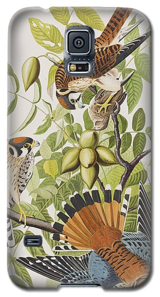 American Sparrow Hawk Galaxy S5 Case
