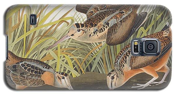 American Woodcock Galaxy S5 Case by John James Audubon