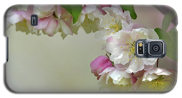 Galaxy S5 Case featuring the photograph Apple Blossoms  by Ann Bridges