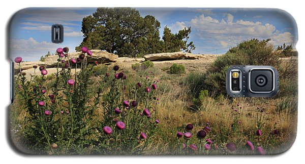 Galaxy S5 Case featuring the photograph Arizona Desert by Joseph G Holland