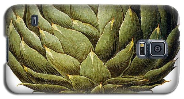 Artichoke, 1613 Galaxy S5 Case
