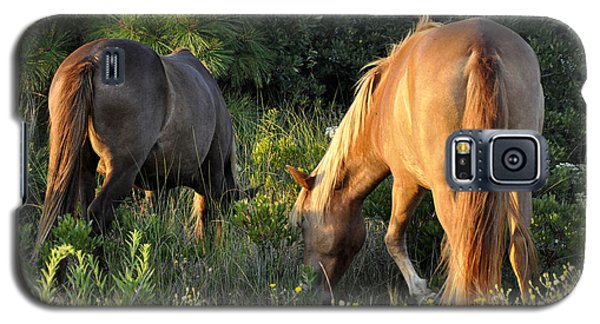 Asateague Horses 6 Galaxy S5 Case
