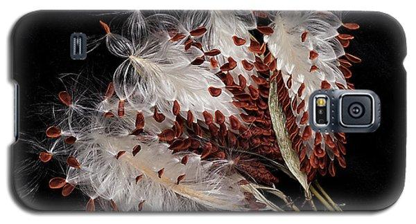 Asclepias Currasavica--seed Pod Galaxy S5 Case