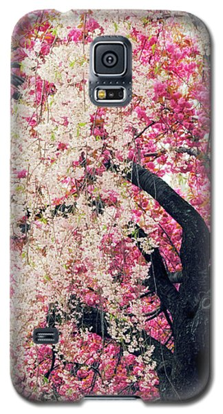Asian Cherry Vignette Galaxy S5 Case by Jessica Jenney