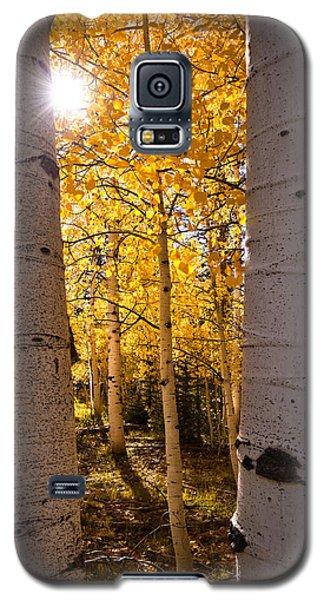 Aspen Gold Galaxy S5 Case