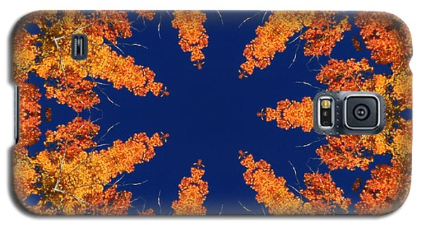 Aspen Kaleidoscope  Galaxy S5 Case by Bill Barber
