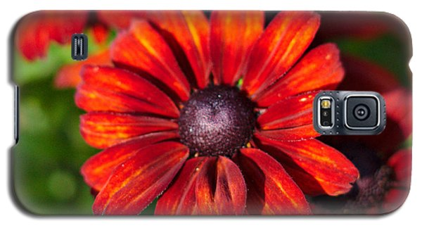 Autumn Flowers Galaxy S5 Case