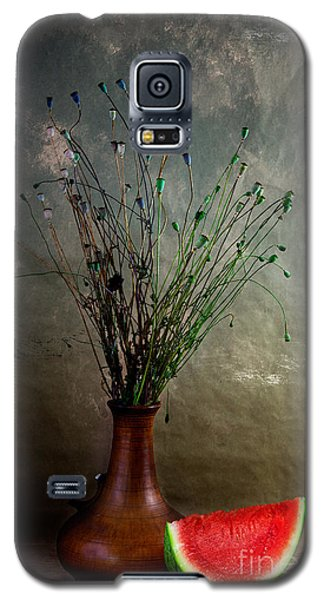 Watermelon Galaxy S5 Case - Autumn Still Life by Nailia Schwarz