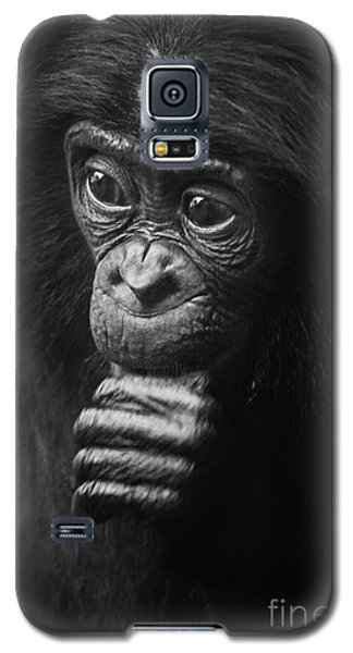 Galaxy S5 Case featuring the photograph Baby Bonobo Portrait by Helga Koehrer-Wagner