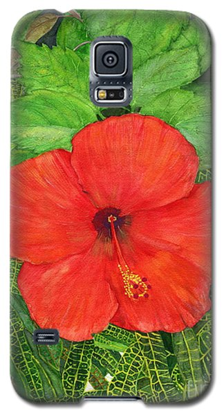 Galaxy S5 Case featuring the painting Balinese Hibiscus Rosa by Melly Terpening