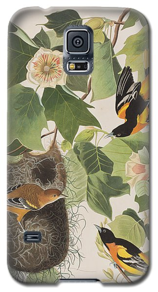 Baltimore Oriole Galaxy S5 Case by John James Audubon