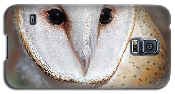 Barn Owl Galaxy S5 Case by Elaine Malott