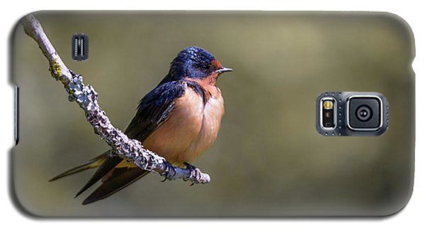 Galaxy S5 Case featuring the photograph Barn Swallow by Kathy King