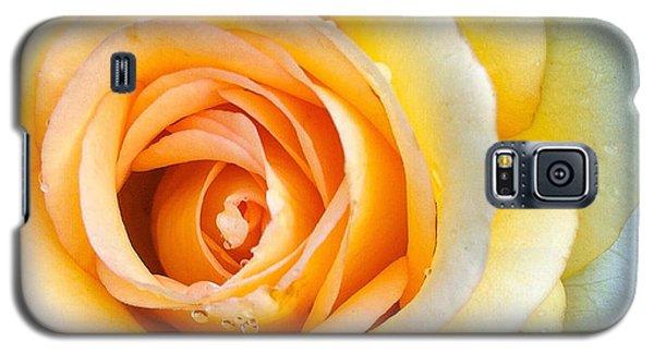 Bathing Beauty Galaxy S5 Case