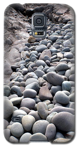 Beach 24 Galaxy S5 Case by Douglas Pike
