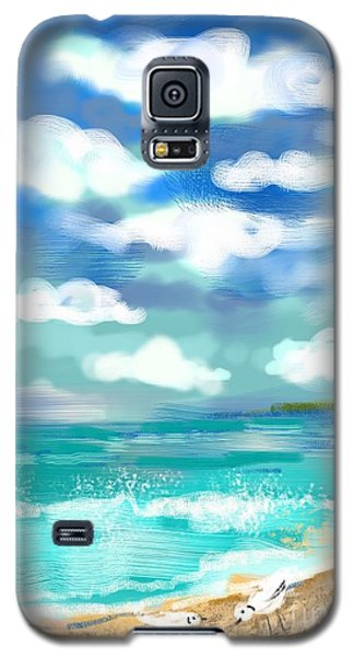 Galaxy S5 Case featuring the digital art Beach Birds by Elaine Lanoue